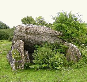 Pant-y-Saer Burial Chamber